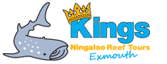 https://www.kingsningalooreeftours.com.au/wp-content/uploads/2018/11/Kings-Ningaloo-Reef-Tours-3.png