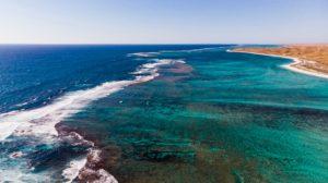 produits sûrs pour les récifs australie