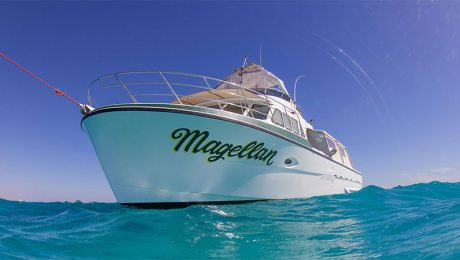 Kings Ningaloo Reef Tours